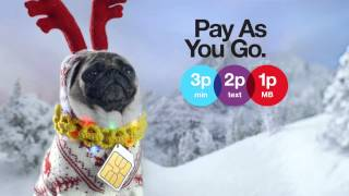 Repeat youtube video Three - Pay As You Go at Christmas. Still seriously serious - Pug 321 Advert
