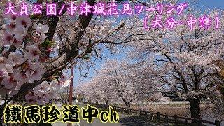 お花見ツーリング/大貞公園・中津城篇【大分/中津】