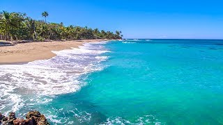 Dominican Beach with Waves Rolling - Natural Background With Ocean Sounds