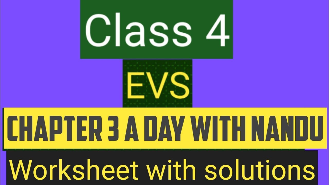 small resolution of studytime Class 4/EVS/Chapter 3/A day with Nandu/Worksheet with answers -  YouTube