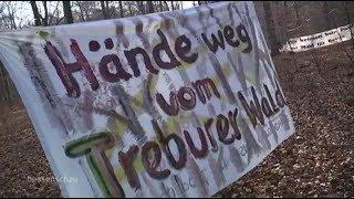Kampf um den Wald am Flughafen Frankfurt