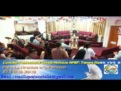 Culto Evangelistco Concilio Pentecostal Senda Antigua AMIP Tampa Bay. - 08-07-2016