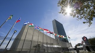 Israel: US helped craft UN resolution