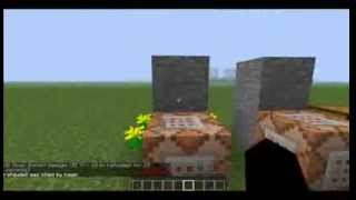 How  to kill someone with a command block!