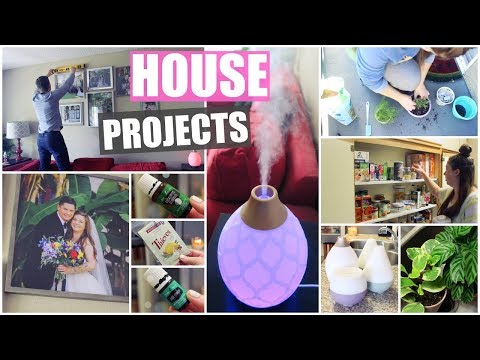 Projects Around The House! Cleaning, Decor & Plants | 2019