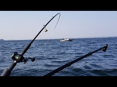 Salmon Fishing Preview - NDGNF