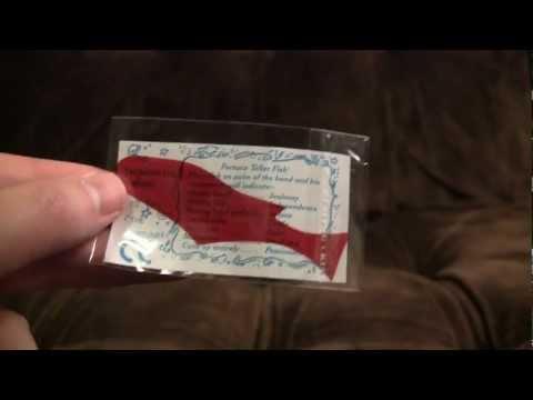 Fortune Teller Fish | Ashens