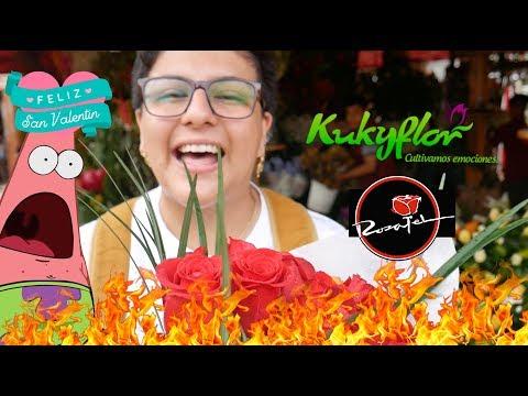 ROSATEL VS KUKYFLOR VS MERCADO DE FLORES - Ariana Bolo Arce