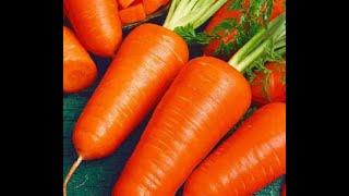 Как сделать ящик для хранения овощей своими руками?