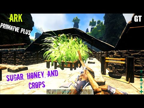 How to make SUGAR and HONEY - Primitive Plus (Part 1) - ARK: Survival Evolved
