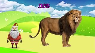 учить животных для малышей - животные для детей - видео развивающее #50