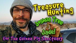 Treasure Hunting for The Guinea Pig Sanctuary | Joshua Tree Jade