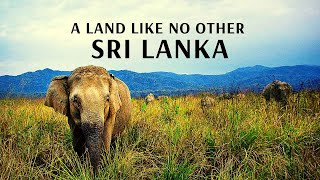 A Land Like No Other Sri Lanka With Flamingo Transworld