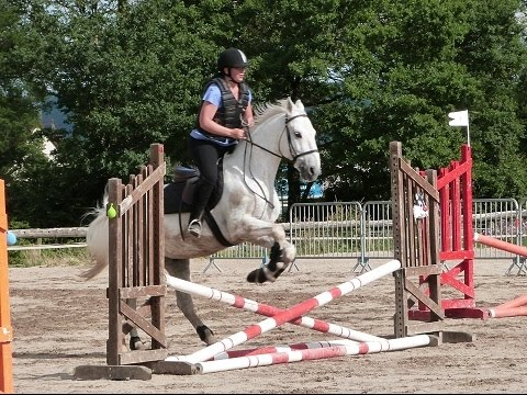 Equitation galop 4 cheval sauts d 39 obstacles youtube - Frison saut d obstacle ...