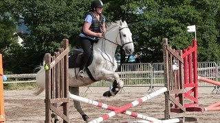 Equitation: Galop 4 cheval - Sauts d'obstacles -