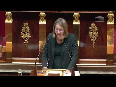 Déclaration du Gouvernement sur la fiscalité écologique et ses conséquences sur le pouvoir d'achat