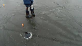 Не ожидал такого хорошего клёва щуки на жерлицы Зимняя рыбалка 2020
