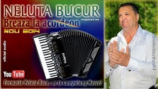 NELUTA BUCUR . Breaza la acordeon (live 2014)