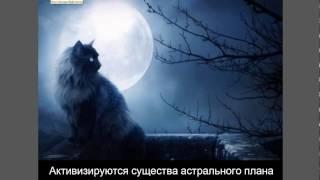 Это надо знать.  Лунное затмение 11. 02. 2017