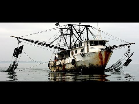 View on Africa: oceans in peril