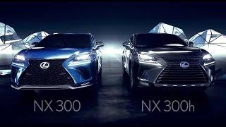 2016-Lexus-Nx-Suv-Vs-Rav4-1024x680 2018 Lexus Nx Vs 2017 Lexus Nx