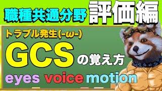 方 Gcs 覚え