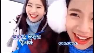 [TWICE] ダヒョンとチェヨンが楽しそうでただただ可愛い!