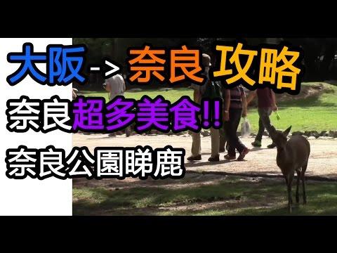 日本奈良攻略-必去中谷通, 奈良公園 Japan Osaka Nara ならし