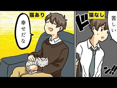【漫画】猫を飼うとどんな生活になるのか?【マンガ動画】