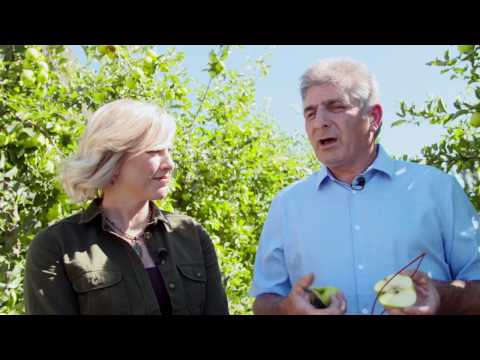 "Washington Grown Season 4 Episode 9 ""Top Fruit"" with Cooking Segment"