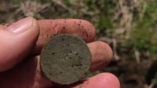 Metal Detecting - Couple of Sweet Finds