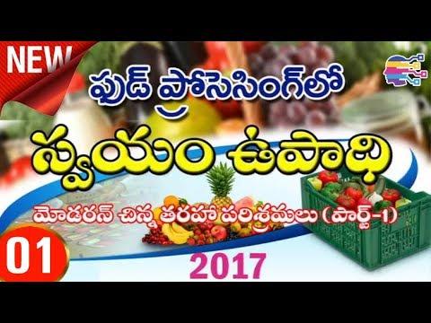 Self employment ideas with food processing units in telugu  - స్వయం ఉపాధి - 01