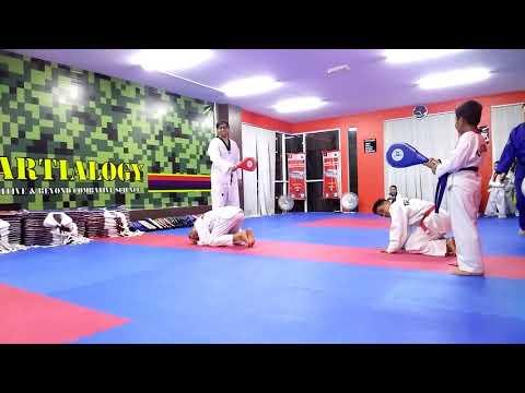 The Stealth Martial Arts Taekwondo Academy - Stealth Prime Centre