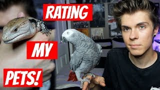 Rating All of My Pets!!!