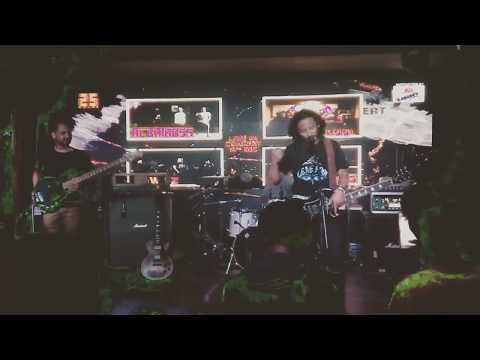 newaz-satishfry live