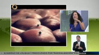 Lupus: Síntomas y tratamientos de la enfermedad