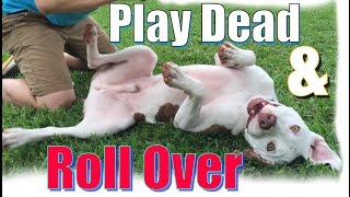 "How to Teach Your Dog to  Roll Over and ""Play Dead"" FAST!"