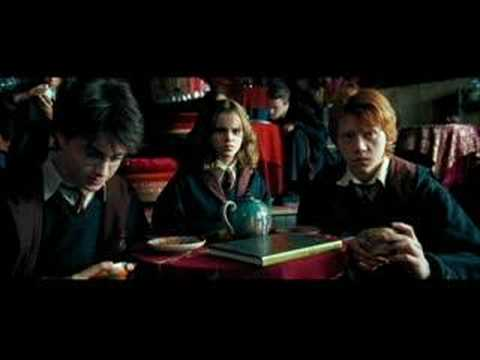 ron and hermione start dating fanfiction