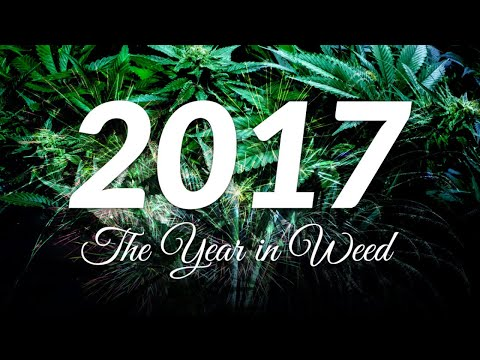 2017 Top Cannabis Victories!