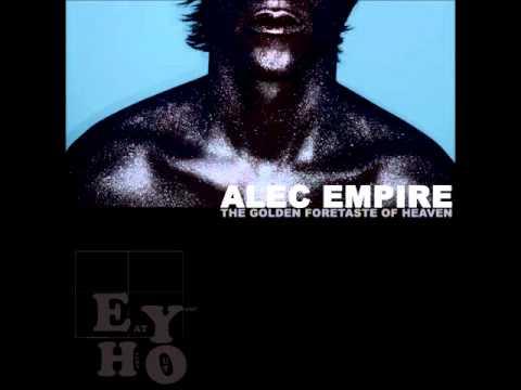 Alec empire bug on my windshield