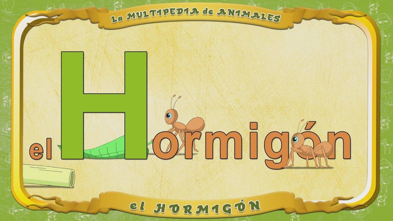 la Multipedia de animales. Letra H - el Hormigón - YouTube