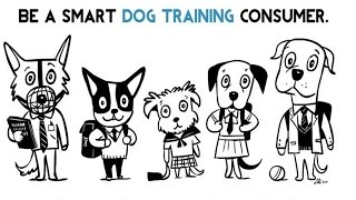 Transparency:  Questions To Ask A Dog Trainer