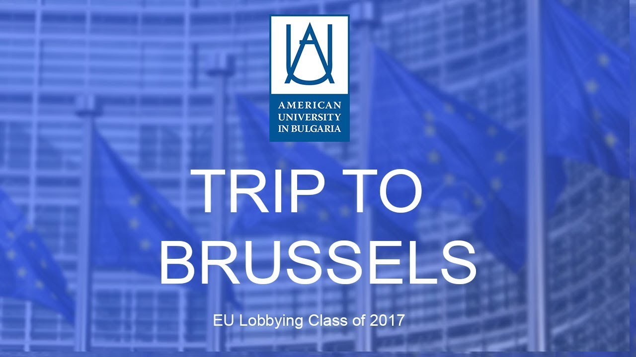 lobbying european union A comprehensive update of mazey and richardson's edited lobbying in the european community--west european politicsgiven the attention lavished on eu interest group politics, our sum of knowledge regarding their impact on eu policy can seem meagre, or at the very least, difficult to piece together.