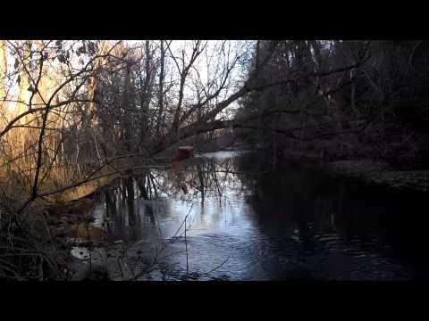 Sneak Peek of Sandy Creek