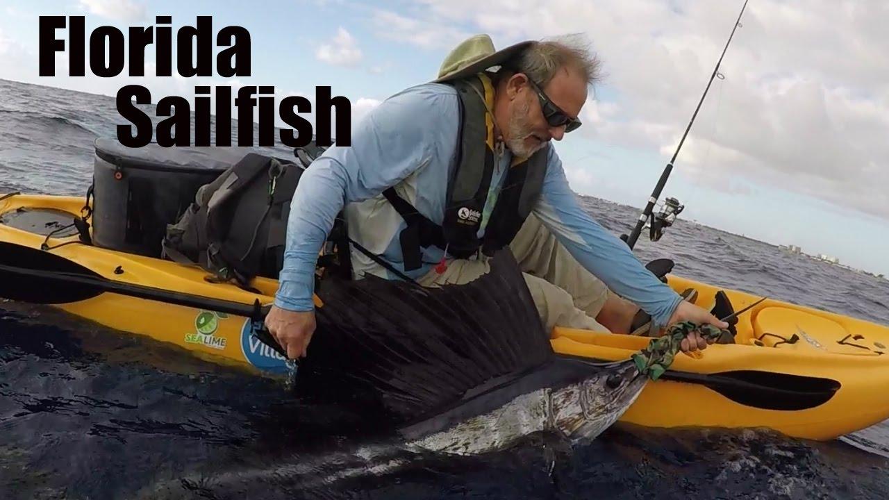 Kayak fishing greg 39 s delray beach sailfish youtube for Delray beach fishing charters