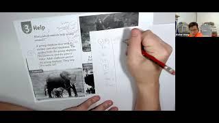 Publication Date: 2021-06-16 | Video Title: Help #pronouns