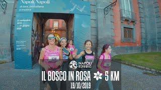 IL BOSCO IN ROSA 2019 - Corri tra i capolavori