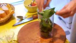 Chef Mary: Tomatoes Mozzarella Pesto sauce