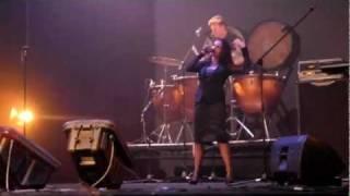 "In The Nursery  - ""Transcript/Blueprint"" Live 2011 | dsoaudio"