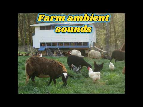 farm sound effects, free white noise with animals for sleeping